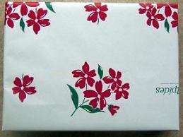 木のおもちゃ・ラッピング・包装紙・のしがみ・プラントイ・ブリオ・ドールハウス